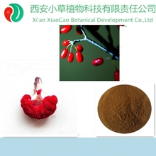 Professional Factory Supply Common Macrocarpium Fruit,Fructus Corni powder,Cornus officinalis Sieb. et Zucc