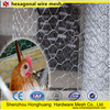 PVC Coated Hexagonal Wire Mesh/poultry mesh/bird cages