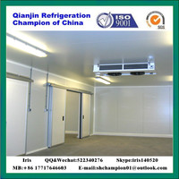 cold storage,cool storage cold room refrigerator freezer