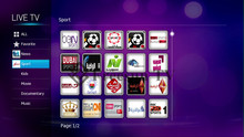 The best 1080P hdmi arabic iptv box hd media player with 411 live arabic channels support vod and wifi