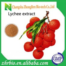 100% Natural Lychee seed Extract powder