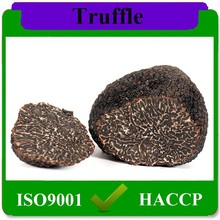 lowest price wholesale Chinese fresh truffle for sale,Hot Sell frozen truffle online