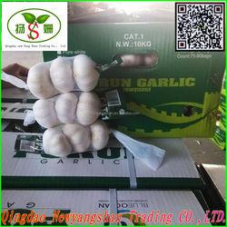 Fresh Chinese Garlic:4.5cm -5cm 5cm-6cm 6cm up