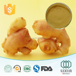 GMP 2015 new products water soluble ginger extract powder,health care product zingiber officinale Antioxidant,OEM
