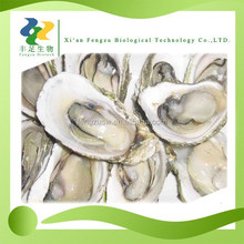 100% pure Natural oyster powder,oyster extract,dried oyster powder