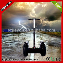 Shenzhen Ocam chariot 2014 the newest design Esway disable car for sale