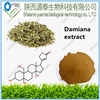 /product-gs/damiana-leaf-extract-for-herbal-sex-medicine-damiana-extract-powder-damiana-extract-60303916621.html