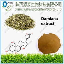 Damiana Leaf Extract For Herbal Sex Medicine Damiana Extract Powder Damiana Extract