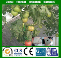 3*3*4cm rockwool growing hydroponic tomatoes
