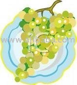 Grape Juice Concentrate ( Red - White )