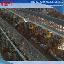 professional manufacture chicken breeding cage / bird cage chicken wire mesh / layer chicken cage for sale