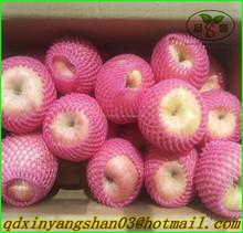 Chinese red fuji apple/Apple Fresh