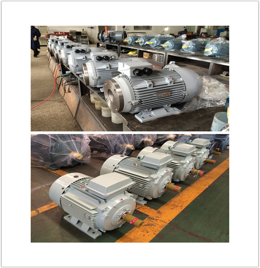 capacitor run asynchronous motor of China