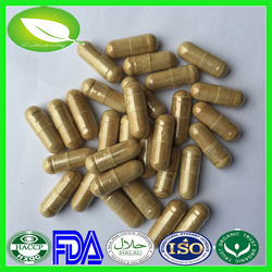 100% health herbal medicine anti-oxidant astragaloside iv extract capsules