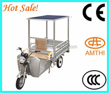 Hot Sale In Russian Small Electric Tricycle For Sale Solar Rickshaw,Solar Power 3 wheel Motorcycle,Amthi