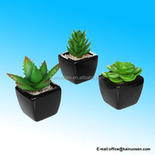 Set of 3 Modern Square Black Ceramic Artificial Succulent Planter / Mini Faux Potted Plants