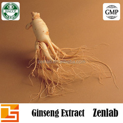 Manufacturer production natural korean red ginseng extract ginseng