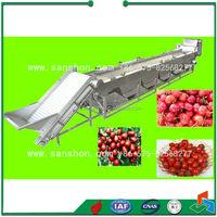 China Litchi Mango Fruit Classifier Grading Machine