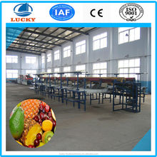 2015 CE approved factory produce stainless steel color sorting machine