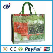 Foldable cheap latest design pp non woven shopping bag
