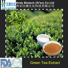 Low Price ISO Certified 90% Polyphenols Green Tea Powder Extract