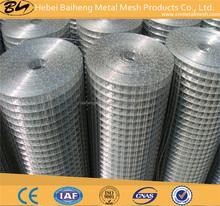 Chile Market 50mmx50mm Galvanized Welded Wire Mesh