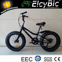 20inch 7 speed fat tire mini mini off road snow bike(E-X834T)