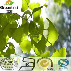 Ginkgo Biloba p.e. 24% Total Ginkgo flavone Glycosides 6% Total Terpene Lactone