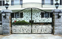 Beautiful Iron Fancy Gates