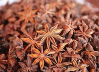 Star Aniseed( Autumn Crop and Spring Crop)