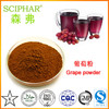 95% Proanthocyanidins Organic grape seed extract,natural grapeseed extract