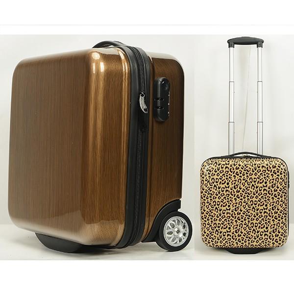 cabin luggage.jpg