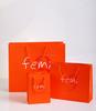 Fashion High Gloss Euro Tote Paper Gift Bag