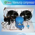 Mike unidad de condensación del evaporador y condensador de unidades, la congelación rápida unidad de equipo