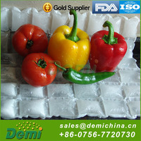 Food use and insulated type cooler bag for frozen food