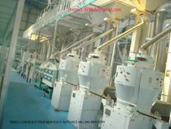Auto- Rice Milling Industry