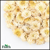 Top Quality Chinese Yellow Mountain Natural Dry Chrysanthemum Flowers Herb Tea
