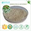 botanic medicines energy drink powder panax ginseng ginsenoside 30%