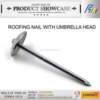 low price 3.8*65mm inches umbrella head roofing nails made in china factory