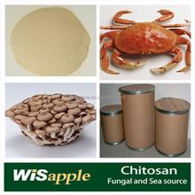 Mushroom source chitosan weight loss
