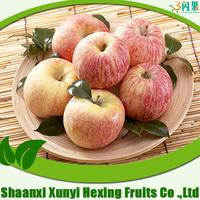 Fuji Apple Wholesale Fruit Prices