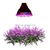 2015 new products 12 volt led grow lights for greenhouse