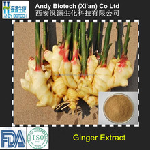 High Quality New Arrival Gingerol 5% Ginger Root Extract