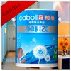Caboli ground coat paint for inside wall