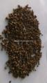 bulk trigosarraceno farelo de trigo para a venda