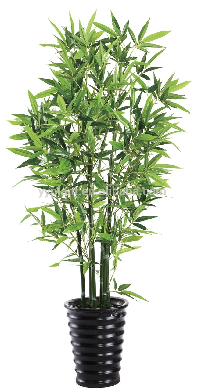 2015 nuevo estilo artificial plantas de bamb alto - Bambu planta exterior ...