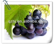 2015 RED GRAPES IN FRESH