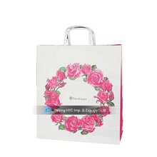Professional Luxury Paper Gift Bag, Plastic Stick Bag/paper bag with logo print