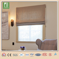 China supplier luxury blinds and curtains for home decoration