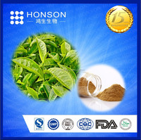 Best quality 40%-98% green tea extract with free samples & highest quality & competitive price